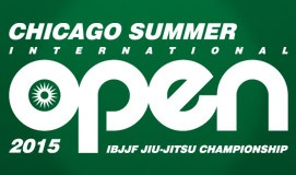 Chicago-Summer-IO-2015-Banner-Small-960x1601